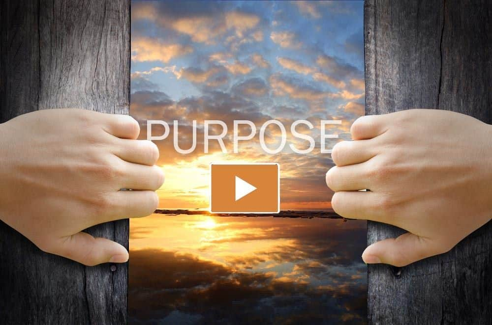 Purpose marketing the amazing impact - showing a sunrise and hands opening a curtain