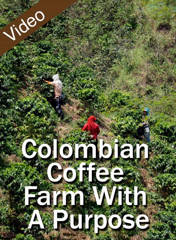 Colombian Coffee Farm With A Purpose_PIN